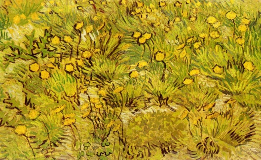 a-field-of-yellow-flowers-1889(1)
