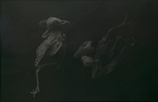 Dead Birds, 1988